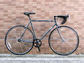 Fujitrack_gray